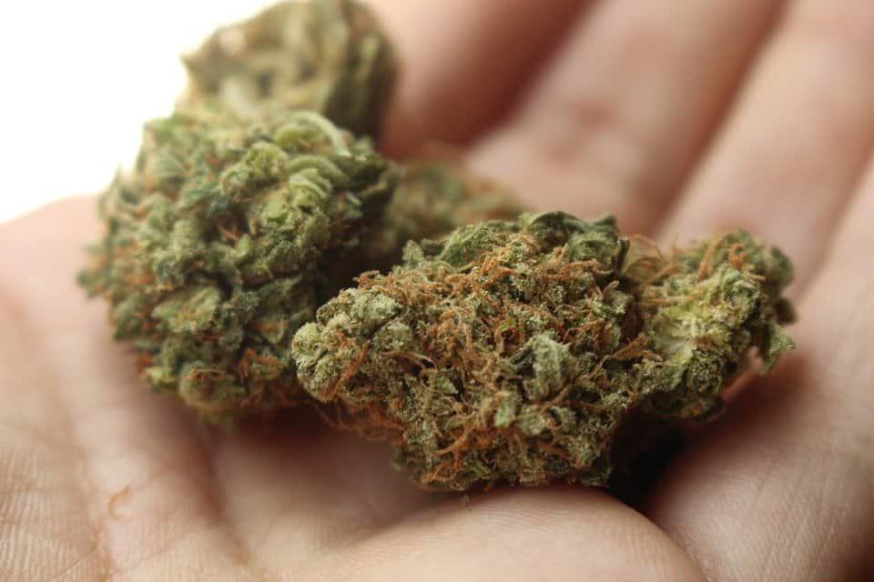 kara dla nieletniego za narkotyki